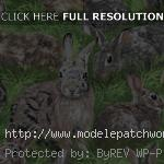 patron patchwork animaux